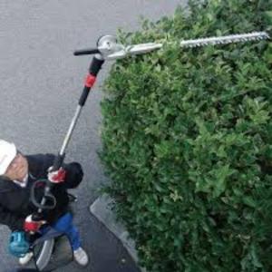 Long Reach Hedge Cutter